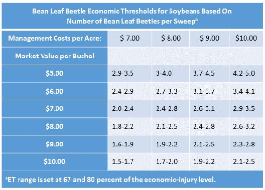 Bean Leaf Beetle Economic Thresholds